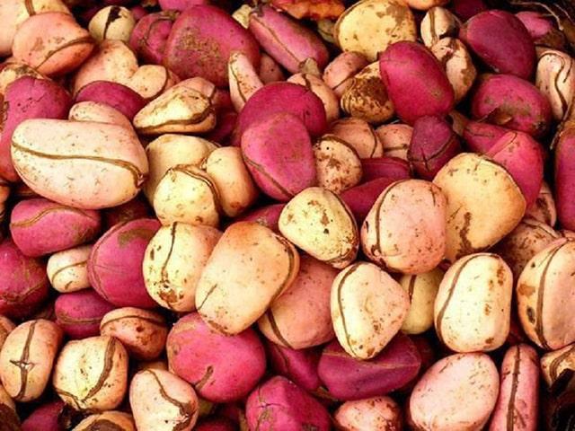 Hạt cây Kola - phong tục cưới truyền thống tại Nigeria